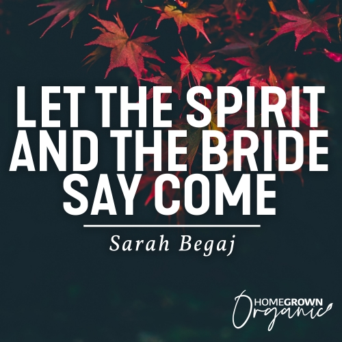 Let-The-Spirit-And-The-Bride-Say-Come
